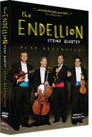 Endellion